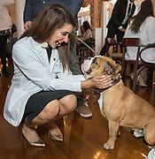 Photography ©Mara Lavitt<br /> Yale University, New Haven.<br /> March 12, 2018<br /> <br /> Yale Physician Assistant Online program white coat ceremony reception, the Graduate Club, New Haven.