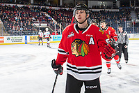 KELOWNA, BC - FEBRUARY 7: Matthew Quigley #5 of the Portland Winterhawks skates to the bench to celebrate a goal against the Kelowna Rockets at Prospera Place on February 7, 2020 in Kelowna, Canada. (Photo by Marissa Baecker/Shoot the Breeze)