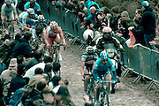 Grischa Janorschke from NetApp team, punctures and starts falling to the ground in a crash at the beginning of the Forest of Arenberg, in the Paris Roubaix professional cycling race classic, won in 2012 by Belgian Tom Boonen - for the fourth time. The 256.5km race runs from Compiègne, near Paris, to Roubaix, northern France, crossing 51.5km of pavé - ancient cobblestones, along the way.