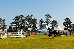 March 22, 2019 - Raeford, North Carolina, US - March 22, 2019 - Raeford, N.C., USA - A rider competes in the CCI3-S show jumping division at the sixth annual Cloud 11-Gavilan North LLC Carolina International CCI and Horse Trial, at Carolina Horse Park. The Carolina International CCI and Horse Trial is one of North AmericaÃ•s premier eventing competitions for national and international eventing combinations, hosting International competition at the CCI2*-S through CCI4*-S levels and National levels of Training through Advanced. (Credit Image: © Timothy L. Hale/ZUMA Wire)