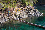 David Page spots summer-run steelhead from log. Vancouver Island, BC