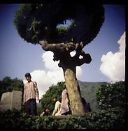 Chesmashaya Garden in Kashmir India.