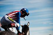 NOVEMBER 3, 2017: BREEDERS' CUP. Jockey dismounts after winning an under-car race at Del Mar
