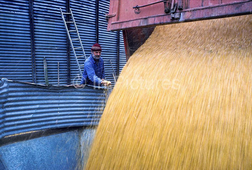 Farmer unloading wheat into silos on farm in the Bordeaux region, France