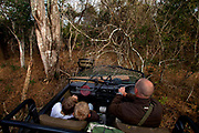 "Offroading through the bush searching for leopard, in a safari land cruiser in the Phinda Game Reserve. <br /> <br /> Phinda Private Game Reserve encompasses an impressive 23 000 hectares (56 800 acres) of prime conservation land wilderness in KwaZulu-Natal, South Africa. Showcasing one of the continent's finest game viewing experiences. Phinda is described as ""Seven Worlds of Wonder"", with its seven distinct habitats - a magnificent tapestry of woodland, grassland, wetland and forest, interspersed with mountain ranges, river courses, marshes and pans. Phinda is a wilderness sanctuary where intimate encounters, adventure and rare discoveries can be experienced firsthand."