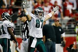 18 Jan 2009: Philadelphia Eagles tight end Brent Celek #87 reacts after scoring a touchdown during the NFC Championship game against the Arizona Cardinals on January 18th, 2009. The Cardinals won 32-25 at University of Phoenix Stadium in Glendale, Arizona. (Photo by Brian Garfinkel)