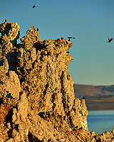 Mono Lake, South Tufa Area. Image taken with a Nikon D3 camera and 200 mm f/2 lens (ISO 200, 200mm, f/4 1/3200 sec).