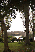 Gardens of Kitchener's Island, Aswan, Egypt