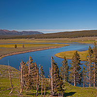 The Yellowstone River flows through Hayden Valley in Wyoming's Yellowstone National Park.