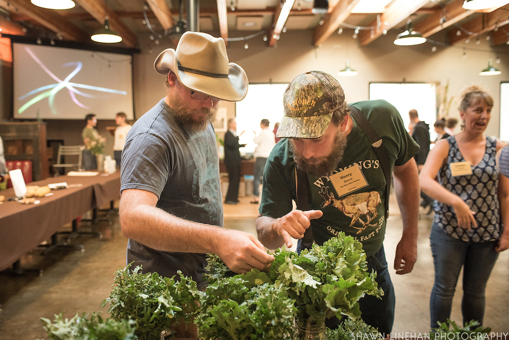 Andrew Still of Adaptive Seeds and Henry Storch of Old Blue Raw Honey check out some of the leaf shapes from a Brassica napus breeding project that breeder Tim Peters started and Andrew and Sarah of Adaptive Seeds are continuing along with chef input from Timothy Wastell.