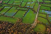 Nederland, Noord-Brabant, Gemeente Boxmeer, 15-11-2010; Maasheggen in de Oeffelter Meent (=gemeenschappelijke weidegrond) in de Zoetepasweiden en Zurepasweiden, ten noorden van Vierlingsbeek..Percelen gescheiden door gevlochten heggen van meidoorn en sleedoorn gelegen in de uiterwaarden van de Maas en in gebruik voor het weiden van vee. Historisch landschap met bijzondere ecologische waarde, gedeeltelijk onder water door de hoge waterstand van de Maas. Maasheggen near Boxmeer en Oeffelt. Plots (for cattle) are seprated by means of twinned or woven hedges of hawthorn and blackthorn. The hedges are located in the floodplain of the Meuse and used for grazing cattle. Historic landscapes with special ecological value. luchtfoto (toeslag), aerial photo (additional fee required) foto/photo Siebe Swart