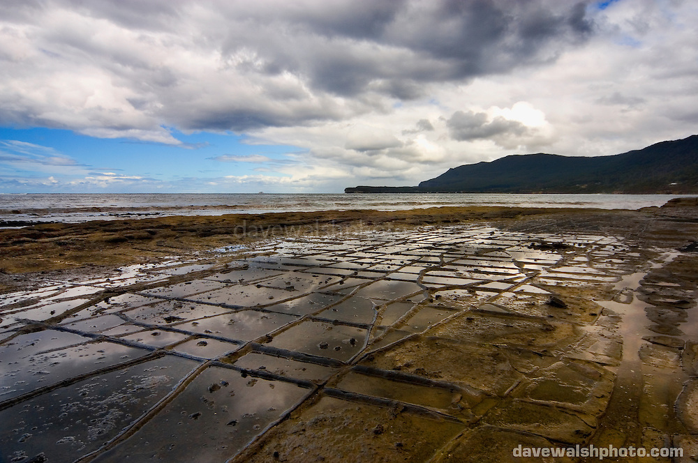 Tesselated Pavement, near Eaglehawk Neck, Tasman Peninsula. ..Tessellated pavement is a rare sedimentary rock formation that occurs on some ocean shores, so named because it fractures into square blocks that appear like tiles, or tessellations. It is formed when rock that has cracked through plate tectonic movement of the Earth's crust is modified by sand and wave action