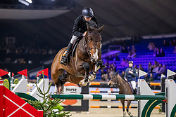 Vermeir Wilm, BEL, Big Lord Carthago<br /> Jumping Mechelen 2019<br /> © Hippo Foto - Dirk Caremans<br />  26/12/2019