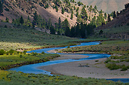 West Walker River, Toiyabe Natilonal Forest, Mono County, California