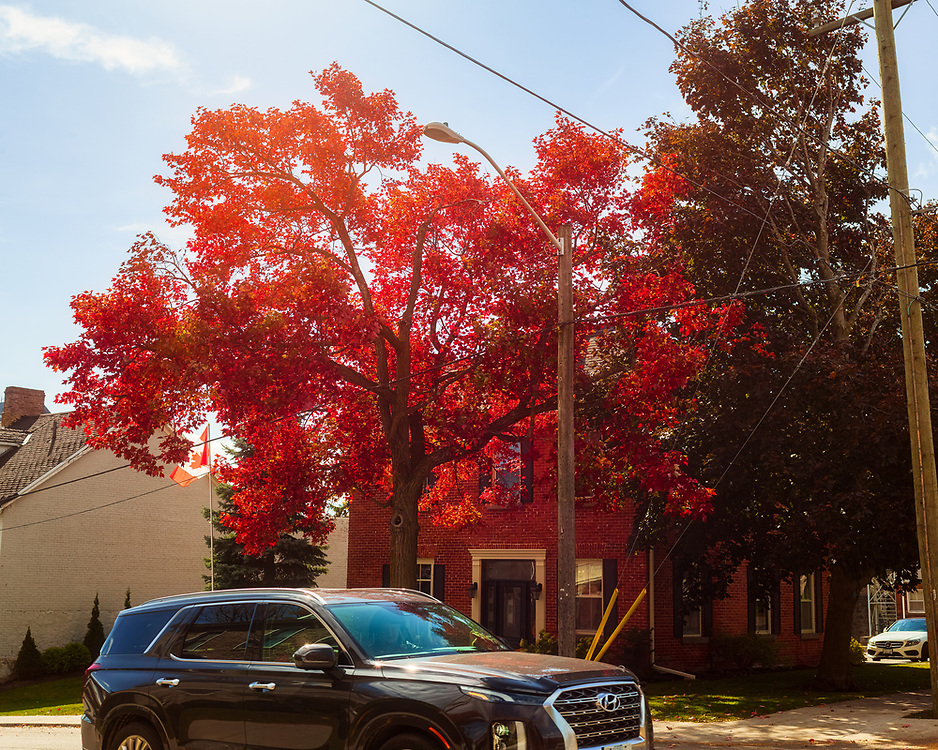 https://Duncan.co/vehicle-with-fall-color-and-brick-building