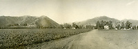 1901 Looking north up Fairfax Ave. from Santa Monica Blvd. Now West Hollywood.