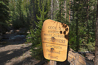 Trail sign, White Cloud Wilderness Idaho