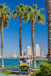 palm trees and downtown San Diego, Coronado Island, San Diego, California, USA, Pacific Ocean