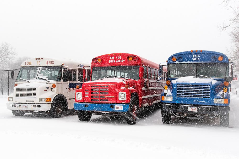 winter busses photo
