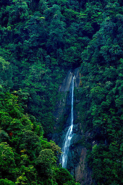 Costa Rica, Orosi Valley, Tapanti National Park, Salto Waterfall, Tropical Cloud Forest