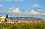 Nederland, Overasselt, 4-7-2016 Zonnepanelen op het dak van de stal van een varkensboerderijFoto: Flip Franssen