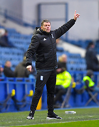 Birmingham City's Manager Steve Cotterill gestures on the touchline
