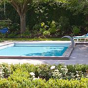 Modern Garden 921