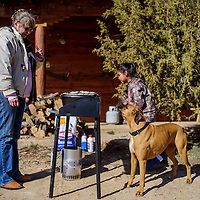 Tammy Francis attracts the attention of a boxer called Betty as she cooks casserole and lasagne for a winter solstice celebration at the Candy Kitchen Trading Post in Candy Kitchen Saturday.