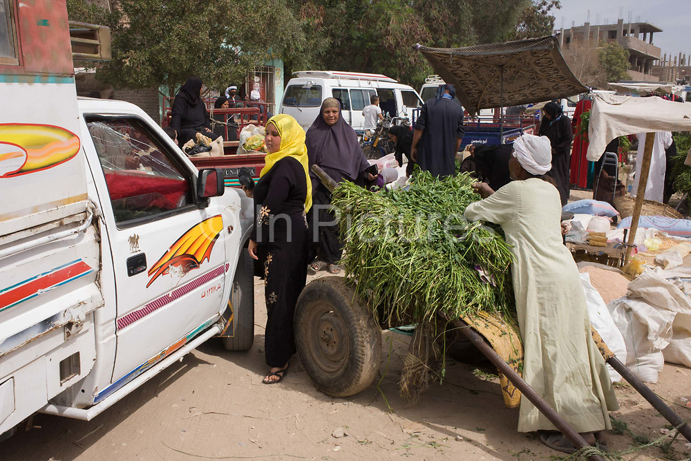 A local woman squeezes through the gap between a stallholder and a car at the weekly market at Qurna, a village on the West Bank of Luxor, Egypt. Amidst the bustle of this busy regular event, people from many miles around have come to trade and buy their provisions.