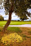 18-09-2015: Golf & Spa Resort Konopiste in Benesov, Tsjechië.<br /> Foto: Golfbal tussen de appeltjes