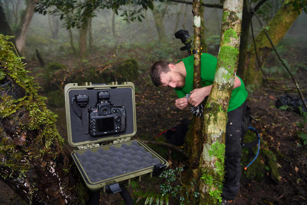 Fabian Muhlberger setting up trap cameras in Yushan National Park, Taiwan