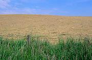 AREKK1 Field of freshly cut summer hay and blue sky, Burrow Hill, Suffolk, England