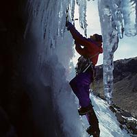 ICE CLIMBING. Allan Bard (MR) front-points up Habeggar Falls, Bishop Creek Cyn. Sierra Nevada, CA