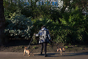 A pet owner stops with her dogs near bushes in a green park space in Victoria Embankment Gardens, on 20th January 2017, in central London, England.