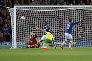 Aaron Lennon of Everton sees his shot blocked by Steven Whittaker of Norwich City and appeals for hand ball. EFL Cup, 3rd round match, Everton v Norwich city at Goodison Park in Liverpool, Merseyside on Tuesday 20th September 2016.<br /> pic by Chris Stading, Andrew Orchard sports photography.