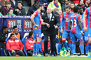 Alan Pardew, the Crystal Palace manager talks to Mile Jedinak, the Captain Palace captain during an injury break. Barclays Premier League match, Crystal Palace v Norwich city at Selhurst Park in London on Saturday 9th April 2016. pic by John Patrick Fletcher, Andrew Orchard sports photography.