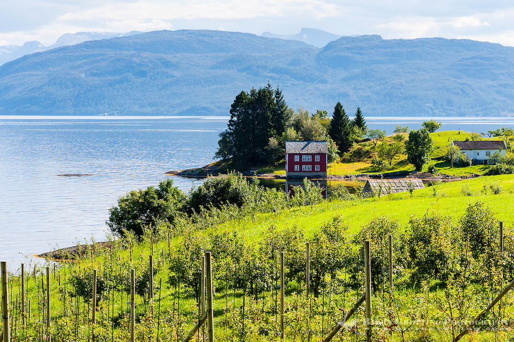 Norway, Strandebarm. Hardangerfjord.