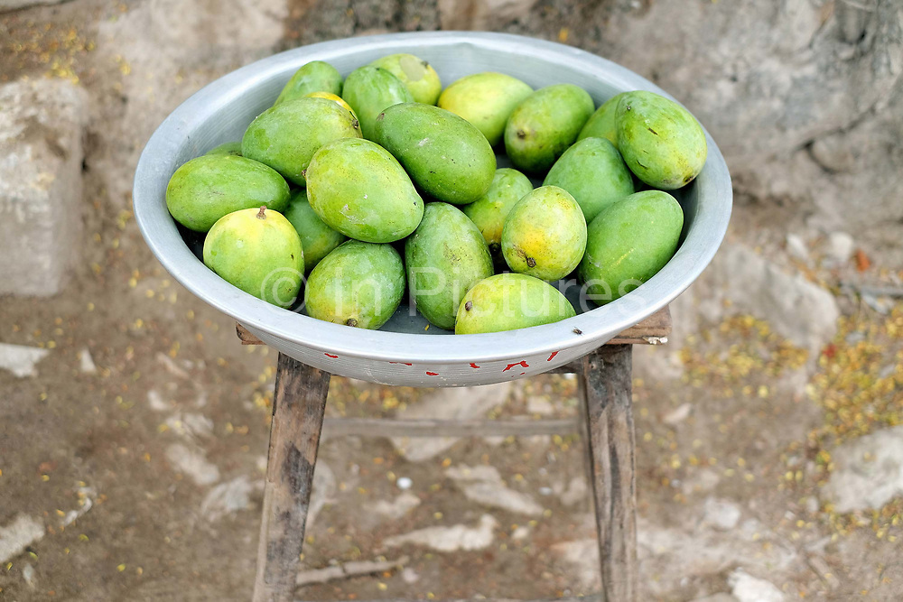Mangoes for sale in Sagyin village on 19th May 2016 in Mandalay division in Myanmar