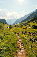 Footpath leading down to the valley at Golzern, Canton Uri, Switzerland.
