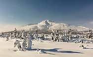 Deep snow blankets the taiga surrounding Gunsight Mountain near Tahneta Pass in Southcentral Alaska. Winter. Afternoon.