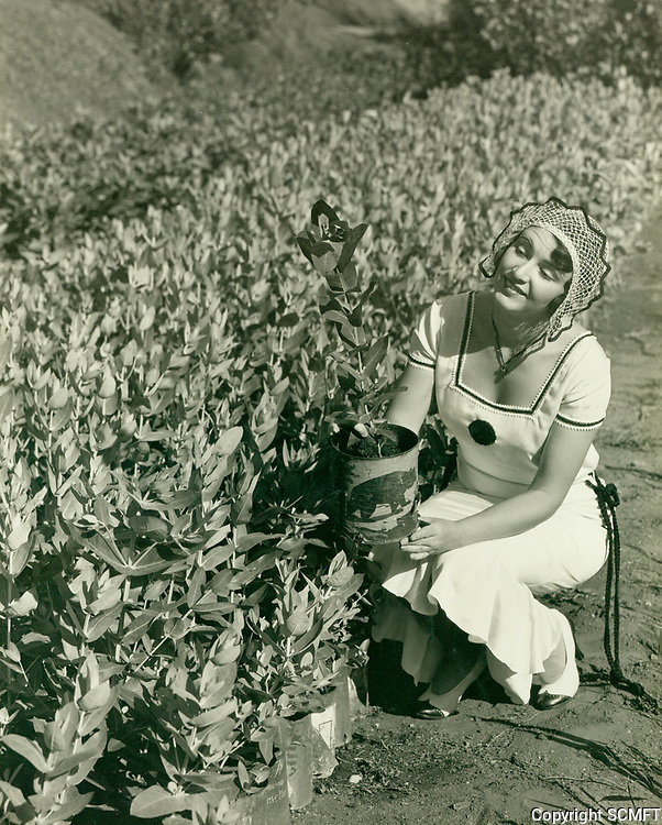 1930 Betty Boyd with plants at the nursery in the Outpost Estates