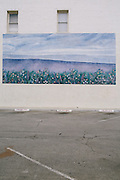 Murals in downtown Bakersfield, Calif. show idyllic scenes of the environment.