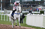TheFlyingPortrait and Sean Quinlan canter to the start for the 4.40pm The Close Brothers Red Rum Handicap Steeple Chase (Grade 3) 2m during the Grand National Festival Week at Aintree, Liverpool, United Kingdom on 4 April 2019.