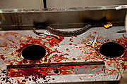 The bloody rattlesnake processing table during the 51st Annual Sweetwater Texas Rattlesnake Round-Up March 13, 2009 in Sweetwater, Texas. During the three-day event approximately 240,000 pounds of rattlesnake will be collected, milked and served to support charity.