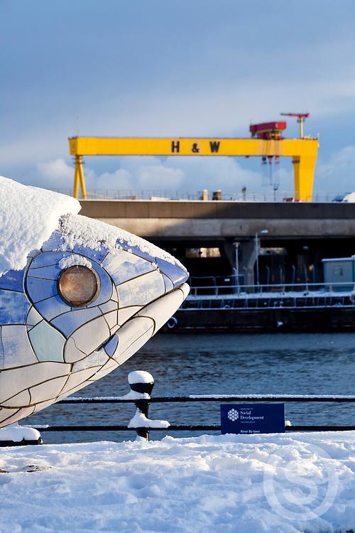 Photographer: Paul Lindsay, Big Fish, Laganside, Belfast