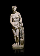 Roman statue of Aphrodite. Marble. Perge. 2nd century AD. Inv no 2014/191 . Antalya Archaeology Museum; Turkey. Against a black background.<br /> <br /> Aphrodite is an ancient Greek goddess associated with love, beauty, pleasure, and procreation. She is identified with the planet Venus, which is named after the Roman goddess Venus, with whom Aphrodite was extensively syncretized. Aphrodite's major symbols include myrtles, roses, doves, sparrows, and swans. .<br /> <br /> If you prefer to buy from our ALAMY STOCK LIBRARY page at https://www.alamy.com/portfolio/paul-williams-funkystock/greco-roman-sculptures.html . Type -    Antalya     - into LOWER SEARCH WITHIN GALLERY box - Refine search by adding a subject, place, background colour, museum etc.<br /> <br /> Visit our ROMAN WORLD PHOTO COLLECTIONS for more photos to download or buy as wall art prints https://funkystock.photoshelter.com/gallery-collection/The-Romans-Art-Artefacts-Antiquities-Historic-Sites-Pictures-Images/C0000r2uLJJo9_s0