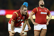 Gethin Jenkins of Wales looks on. Under Armour 2016 series international rugby, Wales v Argentina at the Principality Stadium in Cardiff , South Wales on Saturday 12th November 2016. pic by Andrew Orchard, Andrew Orchard sports photography
