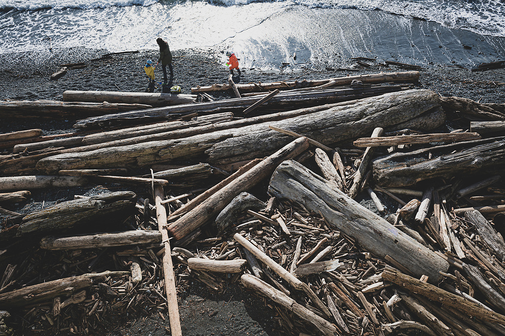 Victoria, British Columbia, Canada - February 11, 2020: A mother and two children walk on a beach covered with large and small pieces of washed up driftwood in Victoria.