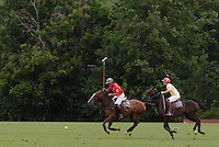 Town of Wallkill, NY - Two players race after the ball during a polo match at the Blue Sky Polo Club on Aug. 19, 2007l
