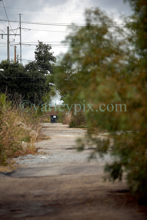 03 December 2013. Lower 9th Ward, New Orleans, Louisiana. <br /> One of the many roads now resembling an overgrown track 8 years after hurricane Katrina. <br /> Photo; Charlie Varley